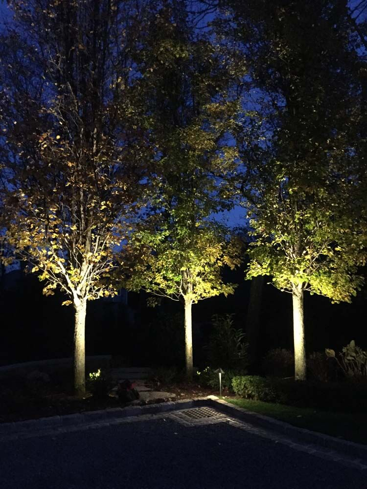Accent Lighting Barry Bros Landscaping
